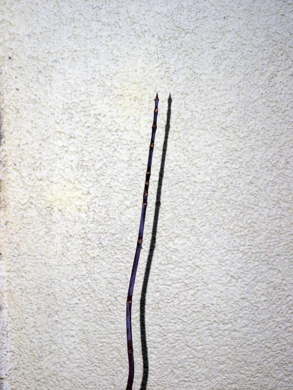 2011.11